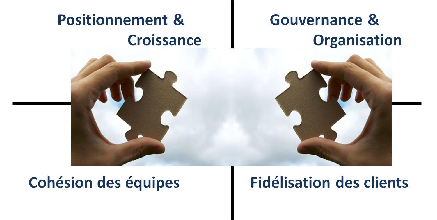 accompagner les projets d'entreprise - conduire le changement stratégique